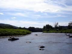 Deerfield River... somewhere around Charlemont, MA